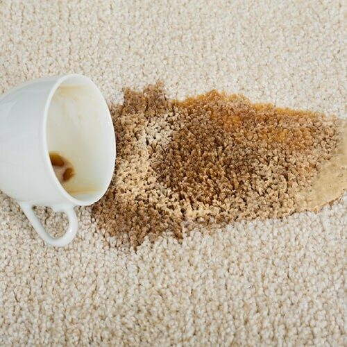 carpetCleaning2_500x500